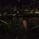 城崎では温泉街で『ホタル』をご覧頂けますの巻